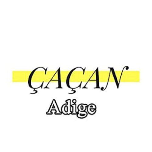 دانلود آهنگ بیکلام Cacan Beat به نام Adige